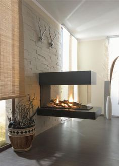3 sided panoramic fireplace - Google Search