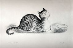 Peggy Bacon (American, 1895–1987). Contentment, 1936. The Metropolitan Museum of Art, New York. The Lesley and Emma Sheafer Collection, Bequest of Emma A. Sheafer, 1973 (1974.356.7) #cats