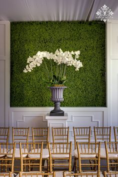 Boxwood Walls at Wedding Ceremony | Caplan Miller Events, a Snippet & Ink Select vendor!