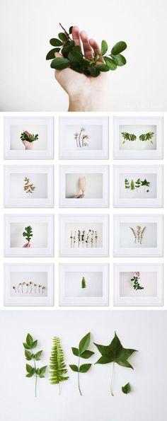 """""""Osservare la natura e scoprire quante forme hanno le foglie. Analizzare le linee e creare un prodotto unico"""". (Alessandra Crocetta)"""