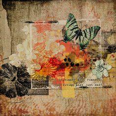 Summerlicious by Studio Romy