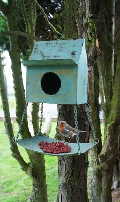 Love this combination birdhouse and bird feeder