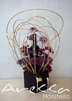 Trachelium + Vino
