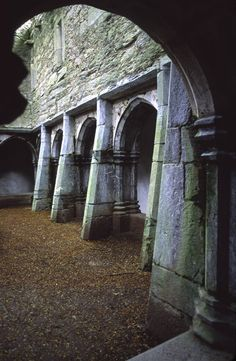 My dream is to one day marry in an old abbey like this one that's falling appart. Not sure why but I love the idea of it.