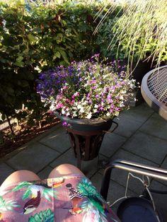 Enjoying my little terrace(#21.07.2018#by#sheila#)