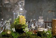 terrarium table decorations! I love the idea of bringing the outdoors in.