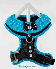 Linda pechera puntos, Ropa y accesorios para mascotas. www.Toutmignon.net