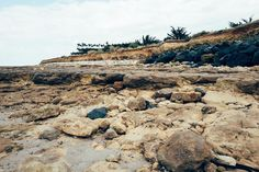 Coastal #loix #ilederé #charentemaritime #landscape #nature #sea #coast #mer #island #wandering #madeinwetzlar #leica #leicaq #rocks #mineral
