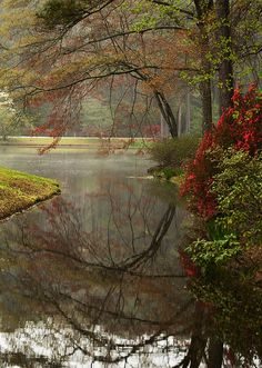 Callaway Botanical Gardens, Atlanta, Georgia; photo by Kathy Clark