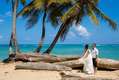 Alina & Adrian - Grand Sirenis Punta Cana Romantic Destinations, Punta Cana, Catamaran, Travel Goals, Tropical, Outdoor Decor, Dress, Recife, Manatees
