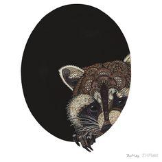 zentangle raccoon illustrations - Google Search