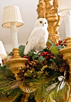 Owls are a favorite winter animal. This one perches above a formal dining room from a chandelier festooned in holly and pine boughs - Traditional Home®