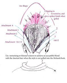 http://www.how-to-cut-hair.co.uk/blog/wp-content/uploads/2011/05/jmhlook-diagram-2144a.jpg
