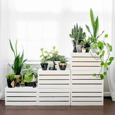 Clearing out the clutter? Looking to make a fresh start? We recommend organizing your space with the clean white lines of this DIY tiered plant stand. It's made from simple wooden storage crates that we just painted and stacked. Add your botanical buddies for a lively, leafy finish.