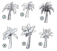 ik heb nummer 2 uiteindelijk gekozen voor mijn palmboom bladeren dus met behulp van dat plaatje heb ik de bladeren getekend