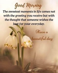 Positive Morning Quotes, Good Morning Wishes Quotes, Morning Quotes Images, Good Morning Beautiful Quotes, Good Morning Inspirational Quotes, Morning Greetings Quotes, Morning Blessings, Good Morning Messages, Good Morning Good Night