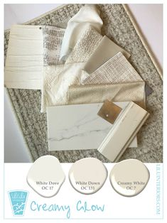 Check out these winter white color palettes by Minneapolis based Interior Design Firm LiLu Interiors. Who knew there were so many whites? Best White Paint, White Paint Colors, Color Inspiration, Interior Inspiration, Best Champagne, Glow Palette, Textures And Tones, Color Swatches, Blog Design