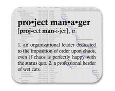 Imagini pentru senior project manager tshirt