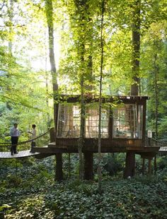 How To Build A Treehouse ? This Tree House Design Ideas For Adult and Kids, Simple and easy. can also be used as a place (to live in), Amazing Tiny treehouse kids, Architecture Modern Luxury treehouse interior cozy Backyard Small treehouse masters Nature Living, House Restaurant, Forest Restaurant, Restaurant Design, Outdoor Living, Outdoor Decor, Outdoor Spaces, Outdoor Bedroom, Outdoor Curtains