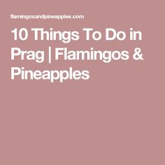 10 Things To Do in Prag   Flamingos & Pineapples