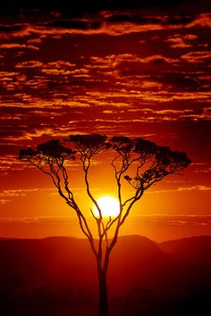Sunset In Africa #Africa, #sunsets, #nature, https://facebook.com/apps/application.php?id=106186096099420