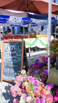 In today's article we're sharing some of our favorite Bay Area Farmers Market. Major benefits - open-air browsing and organic food! bay area blogger | bay area photography | bay area travel | california blogger | palm trees & pellegrino | things to do bay area| bay area travel | bay area day trip | bay area weekend | bay area farmers market | bay area fall activities | bay area fall things to do | bay area food | bay area farm | palm trees & pellegrino