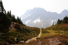 Cascade Pass Sahale Arm Trail - North Cascades  Photo by Janzster's View on Flickr