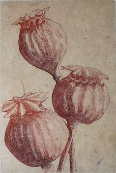 Leonie Auhl (copperplate etching and aquatint)