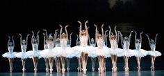 ballet opera de Paris, Le Lac des Cygnes