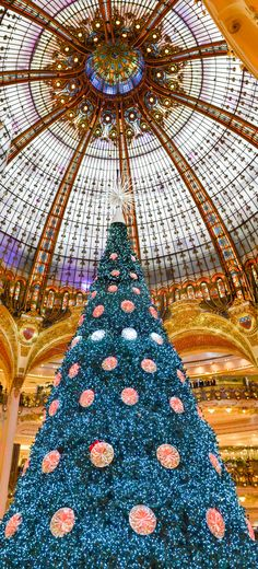 Giant Christmas Tree in Paris but the dome reminds me of a hotel in Barcelona xoxoxo