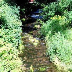 Geraradweg von den Quellen bis nach Erfurt http://frank-c-mey.com/tour-geraradweg-24-07-15 Wilde Gera bei Gehlberg