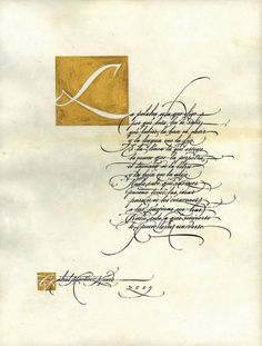 Assorted calligraphic works by Gabriel Martínez Meave, via Behance
