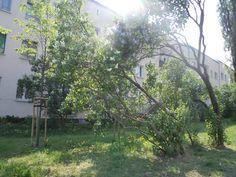 Wiosna w Warszawie
