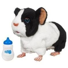 FurReal Friends Newborn  Guinea Pig Black And White >>> Find out more about the great product at the image link.Note:It is affiliate link to Amazon.