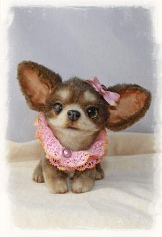 Honey the teacup  chihuahua puppy by by Felt Artist by Jelena Kuzmicha (Xellisart)