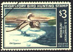1967 Federal Duck Stamp