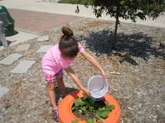 """Grow a Garden Camp - June 20-21, 2012  Campers had a lot of fun at the """"Grow a Garden"""" Camp.  They designed their own stepping stone, painted a flower pot and planted flowers in them, learned about worms and how they help our gardens grow, planted flowers and vegetables in our colorful """"tire"""" containers, created their own """"hairy"""" plant person, ate yummy snacks, participated in gallery play, and much more!"""