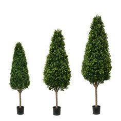 Pacific Silkscapes is here to help you select the perfect indoor or outdoor artificial topiary tree for your decor. Boxwood Tree, Topiary Trees, Artificial Topiary, Entrance Ways, Reception Areas, Indoor Outdoor, Landscape, Tower, Walls