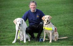 Seeing-eye dog loses both eyes, owner gets another to see for them all. @Ina Miller-Lyke