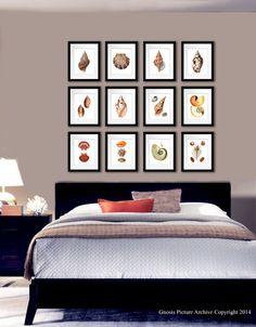 Set of 12 Sea Shells Home Decor Art Prints beach theme bedroom decor wall hanging 8x10 wall art nautilus conch scallop shells orange brown