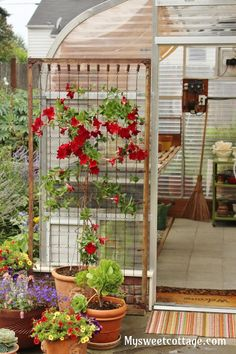 A DIY trellis from a