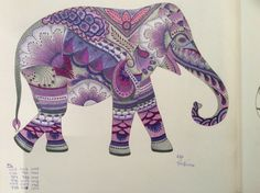 Elephant - Animal Kingdom - Coloring I've Completed