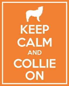 COLLIE ON!!! :)   ...........click here to find out more     http://googydog.com