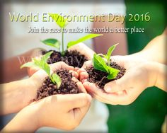 A small step to save the EARTH is in our hands! belated #WorldEnvironmentDay  #SaveEarth #saveplanet #environment