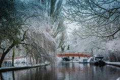 Winter in Berkhampstead Canal Boat, Narrowboat, British Isles, Cruise, Castles, Water, Boats, Gypsy, Pictures