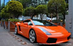 Lamborgini Gallardo by fun with Alfredo Jones, via Flickr