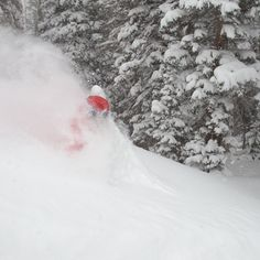If you looked in the dictionary for the definition of a you'll see Resort's of sweet, fresh, spring snow. Spring Snow, Ski Resorts, Skiing, Places To Visit, Fresh, Sweet, Sports, Travel, Outdoor