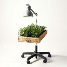 Wiederverwertete Möbel alsPflanzen Behälter verwendet holz rollen lampe