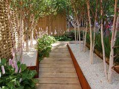 Ogród dla zapracowanych - styl eko, zamiast ściółki żwir