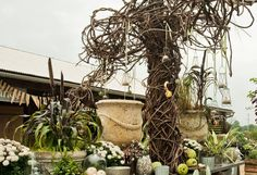 Feeling Fall on The BULLETIN at Terrain #vines  Great use of grapevine - so unexpected.